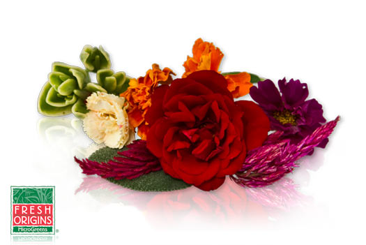 Affordable assorted edible flowers for garnish.