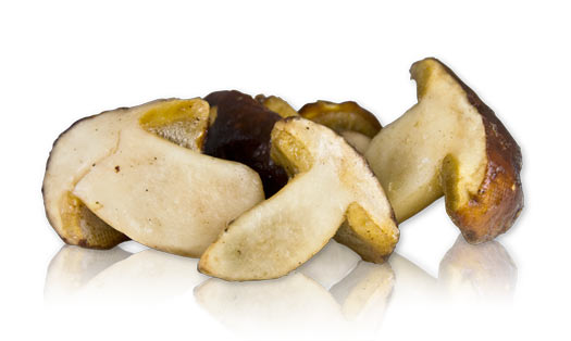 Shipping Refrigerated Items Fed Ex http://www.marxfoods.com/Frozen-Porcini-Mushrooms