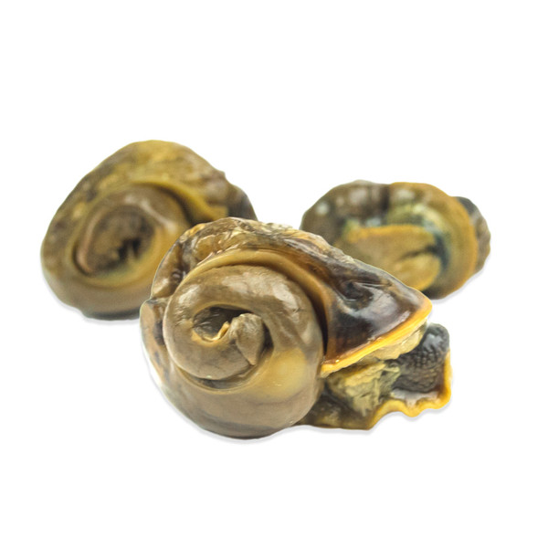 American Escargots