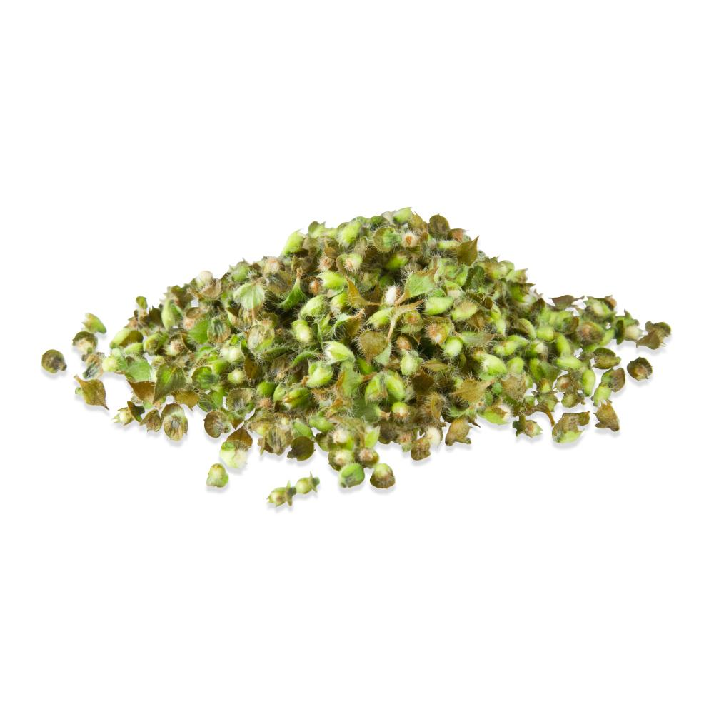 Fresh Basil Buds