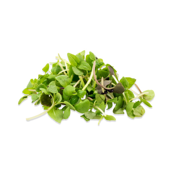 Micro Basil Mix