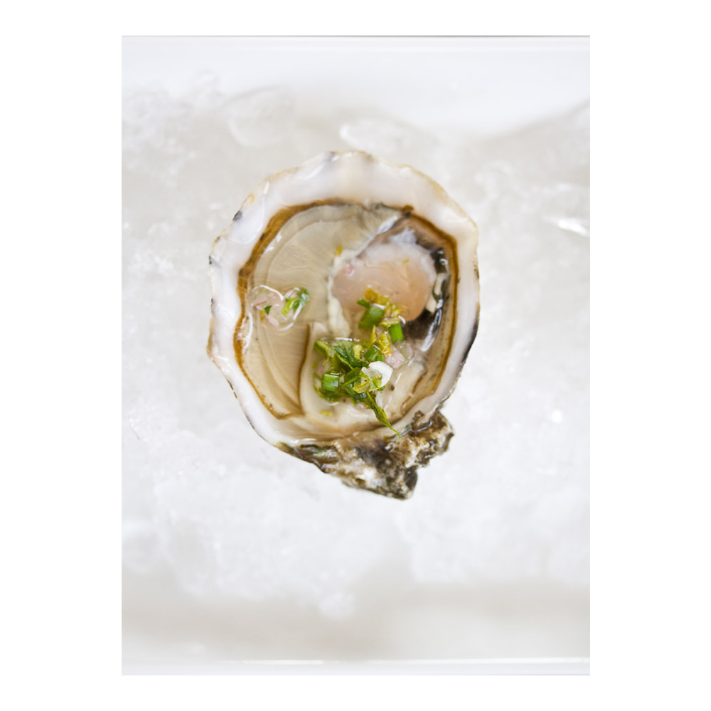 Blue Point Oysters-2