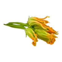 Fresh Squash Blossoms