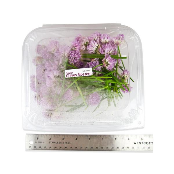 Fresh Chive Blossoms-3