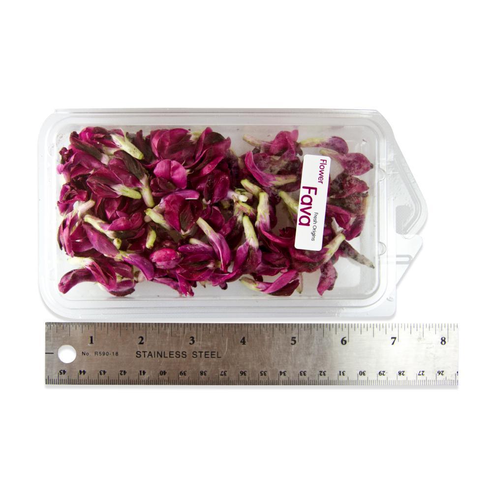 Fresh Fava Flowers-2