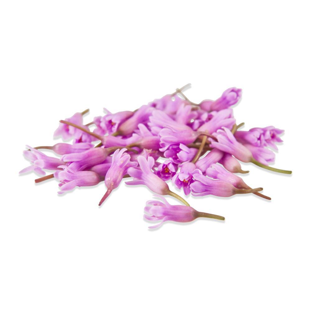 Fresh Garlic Flowers-3