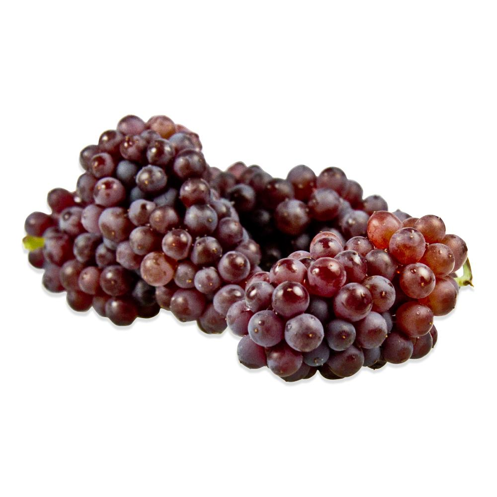 Champagne Grapes-1