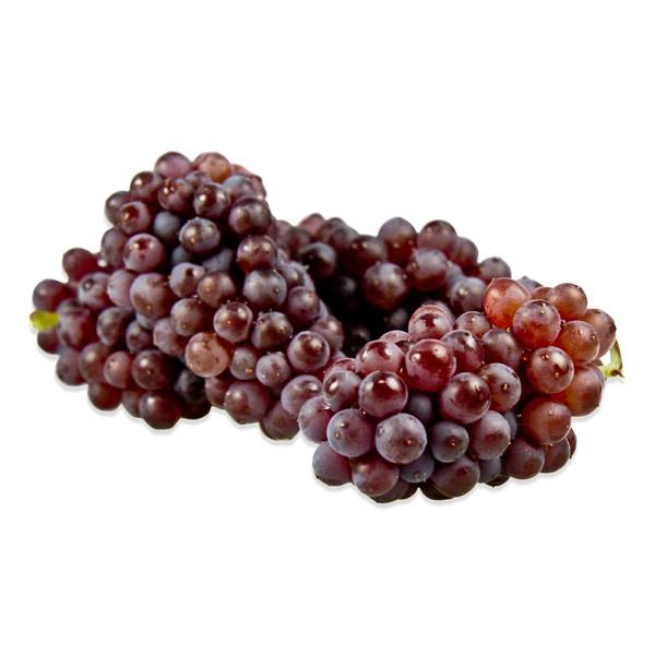 Champagne Grapes-1