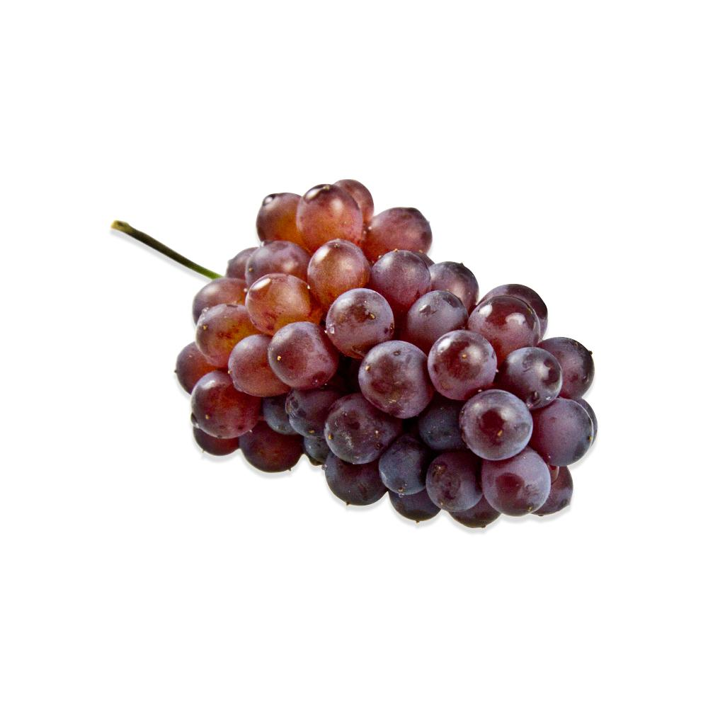 Champagne Grapes-2