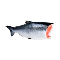 Whole Copper River King Salmon-1