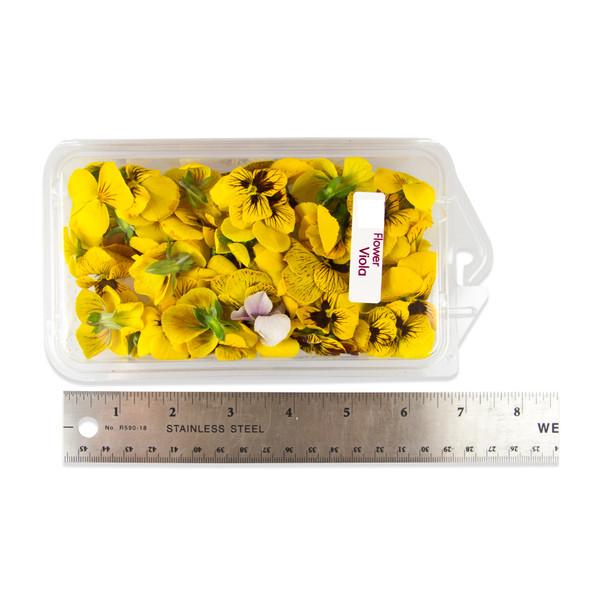 Fresh Violas Blend-2