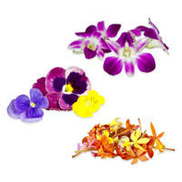 Edible purple & white karma orchids, multi-hued pansies & micro orchids