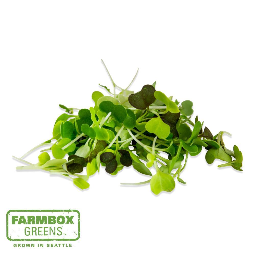 Farmbox Microgreen Mix