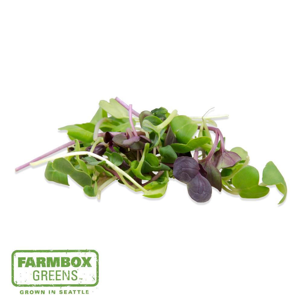 Farmbox Micro Radish Mix