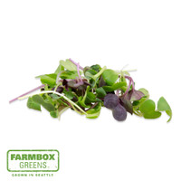 Farmbox Micro Radish Mix