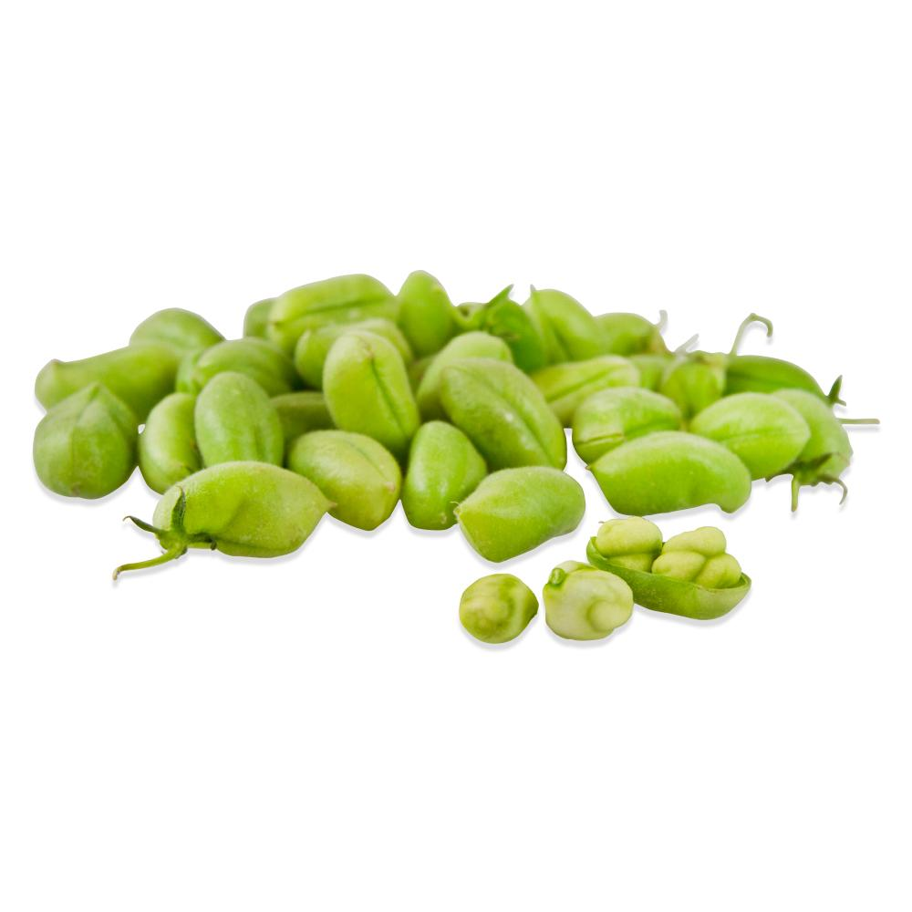 Fresh Garbanzo Beans-1