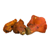 Frozen Lobster Mushrooms