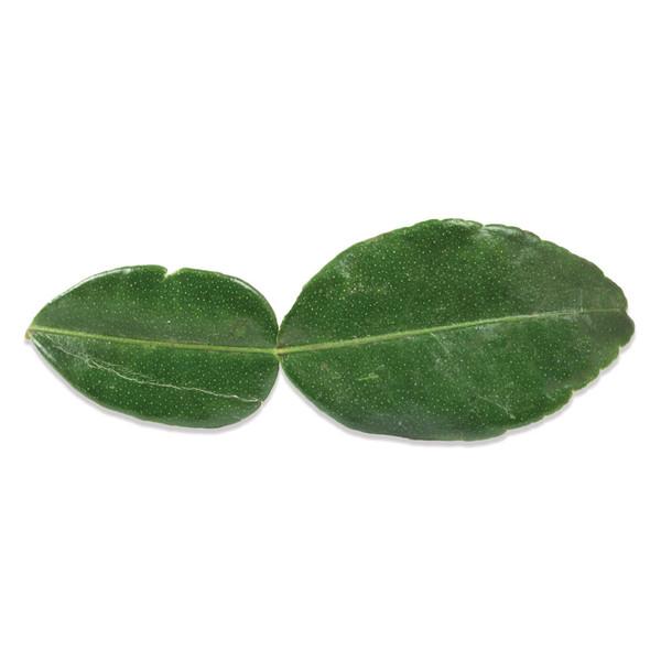 Kaffir (Makrut) Lime Leaves