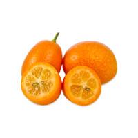Kumquats-1