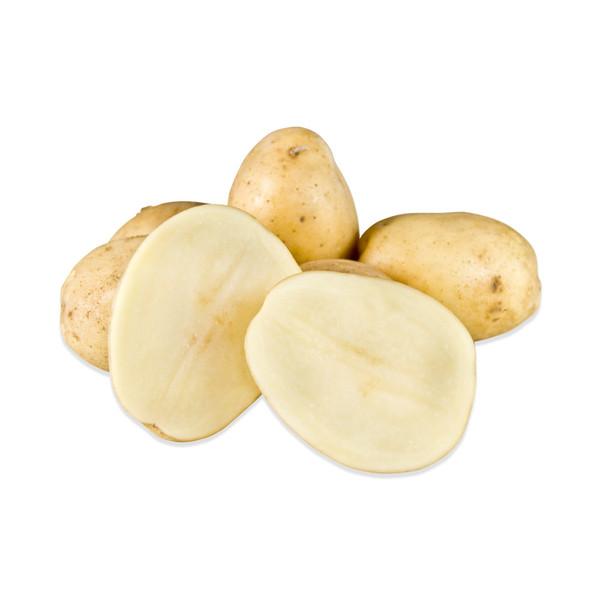Maris Piper Heirloom Potatoes