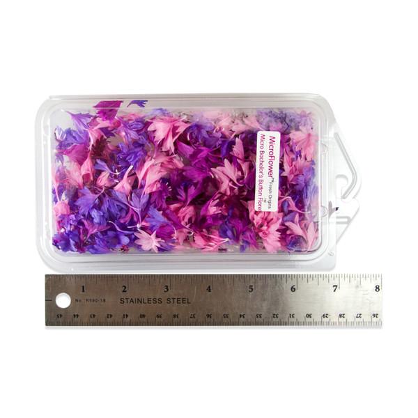 Fresh Micro Bachelor's Button Florets ™-2