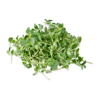 Micro Basil Licorice