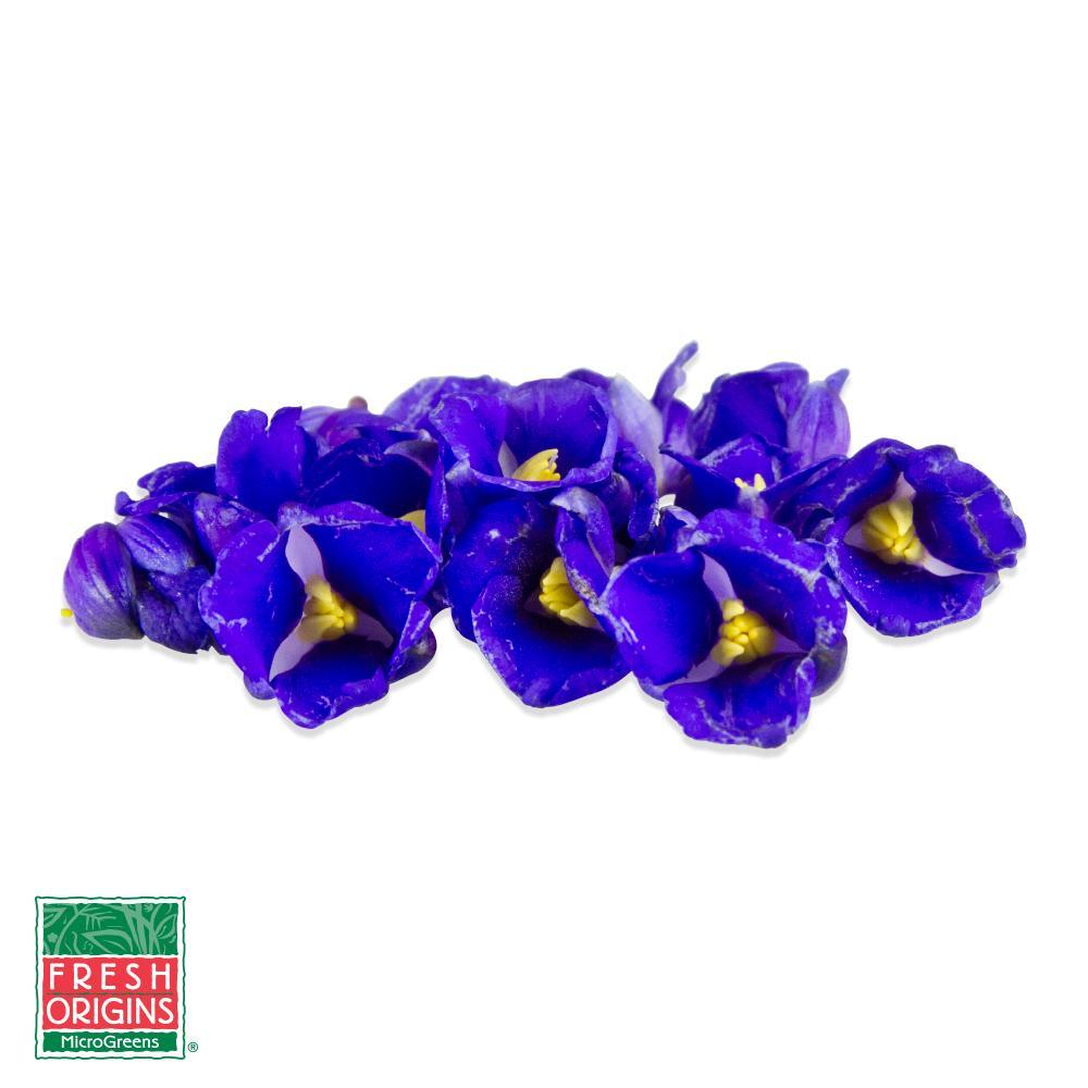 Fresh Micro Blue Sapphires-1