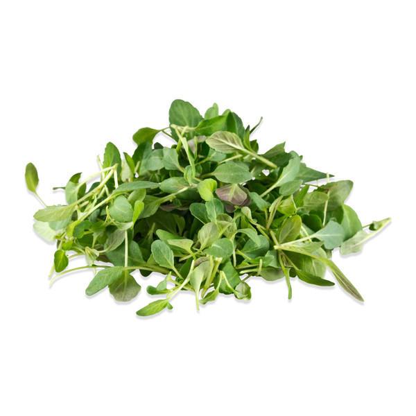 Micro Mint Lime