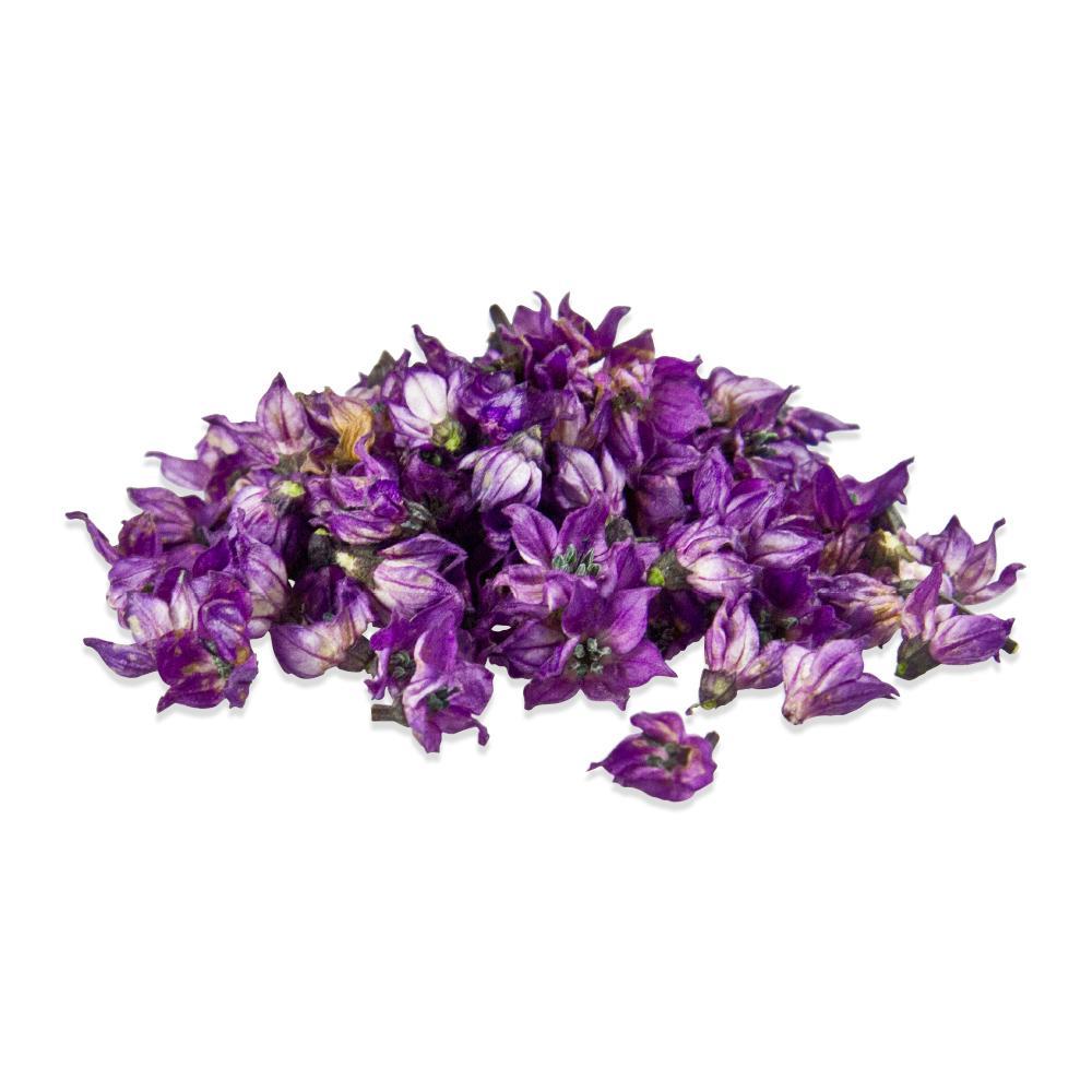Fresh Micro Pepper Flower Purple-1