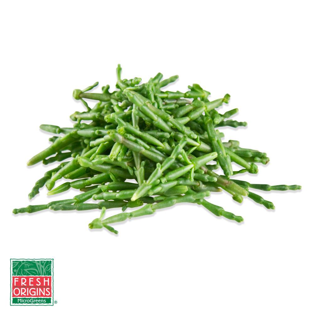 Micro Sea Beans