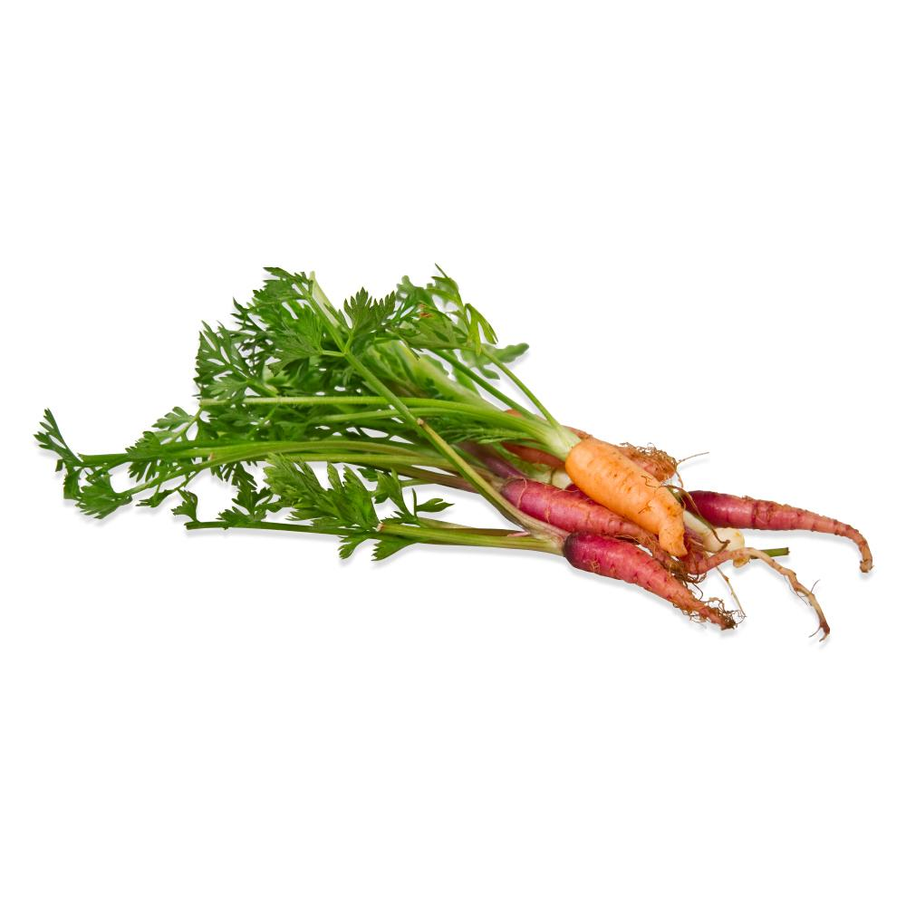 Tiny Carrot Mix