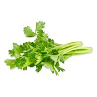 Tiny Celery