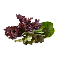 Mini Crown Lettuce Mix