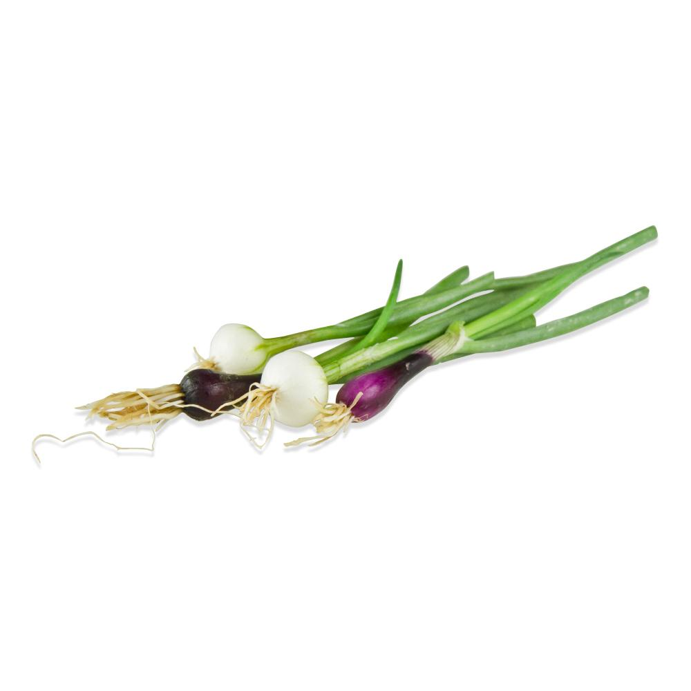 Tiny Onions