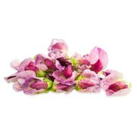 Fresh Pea Flowers-1