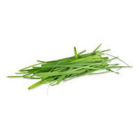 Petite Lemongrass