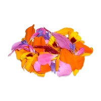 Fresh Edible Flower Petal Mix
