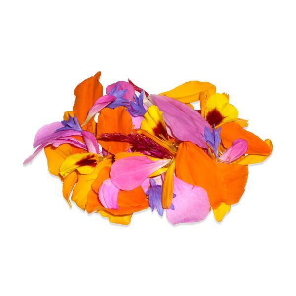 Fresh Edible Flower Petal Mix