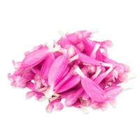 Fresh Sage Monet Pink™ Flowers-1