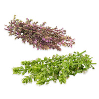 Shiso Flowers Mix-1