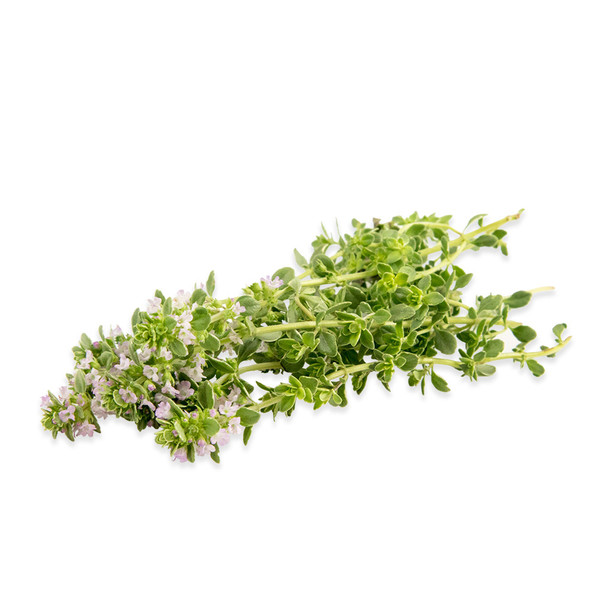 Fresh Thyme Blossoms-1