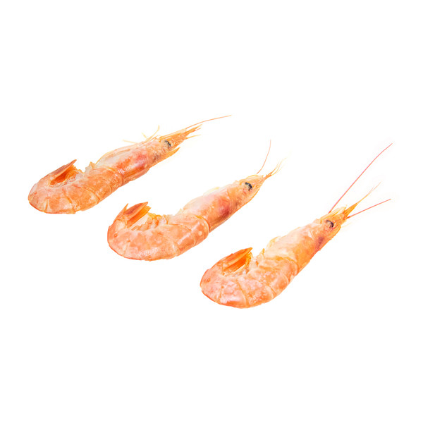 Argentinian Red Shrimp-1
