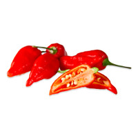 Fresh Ghost Chiles-1