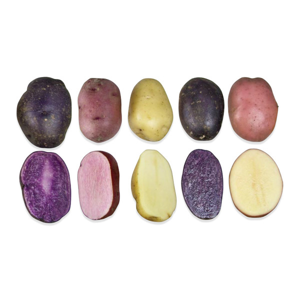 Heirloom Potato Sampler