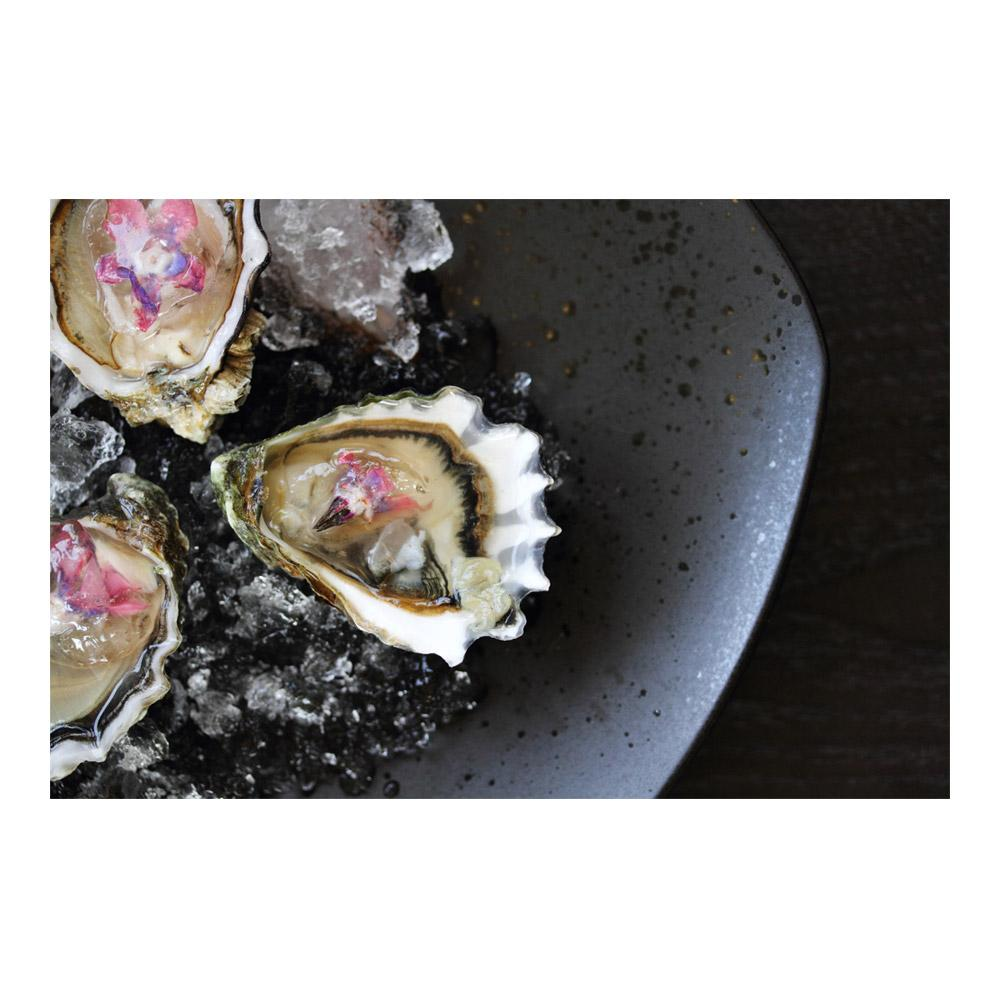 Live Olympia Oysters-2