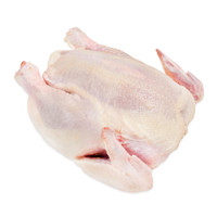 Whole raw organic chicken fryer