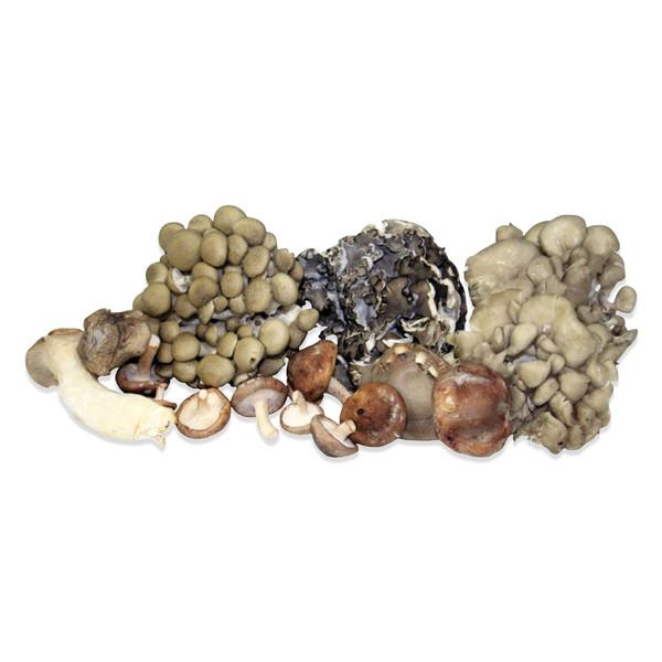 Fresh Organic Mushroom Sampler