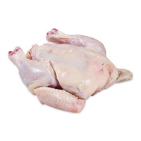 Whole Poussin-1