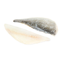 Sea Bream (Dorada) Fillet-1