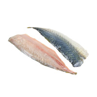 Raw, skin-on, Spanish mackerel fillets